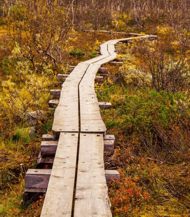 Wooden walkway, Kilpisjärvi