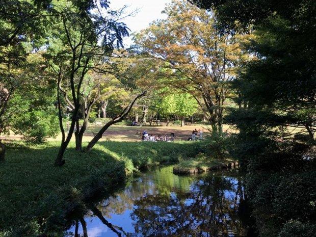 Kitanomaru Park, Tokyo