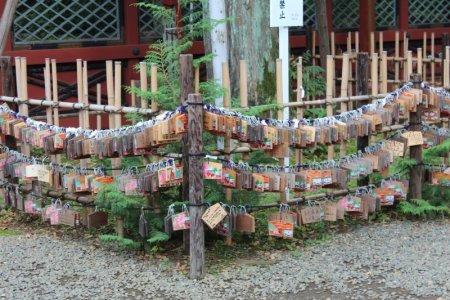 Nezu shrine courtyard, Tokyo