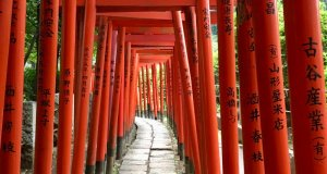 Dreaming about travel: Japanese shrine gates