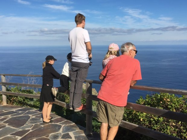 Stopping for views, Tenerife's north coast