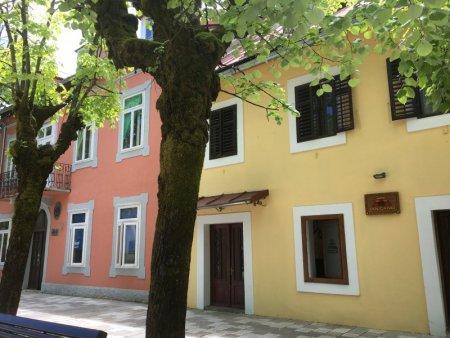 Cetinje street view
