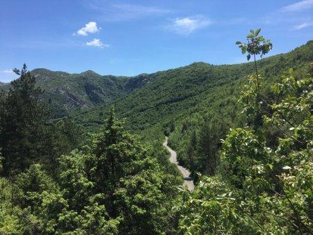 Road from Cetinje to Rijeka Crnojevica