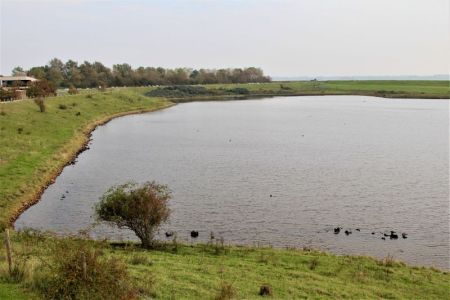 Holland's dikes and polders