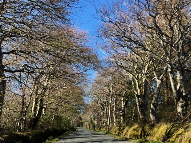 Driving to Wicklow mountains, Ireland