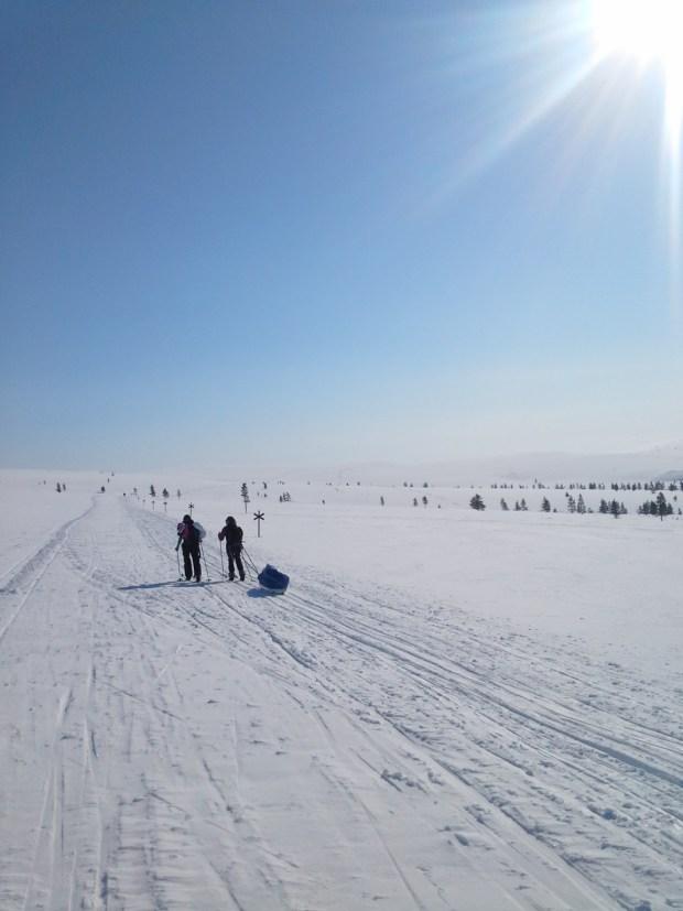 Ski tour in Lapland, skiing in the Saariselkä wilderness