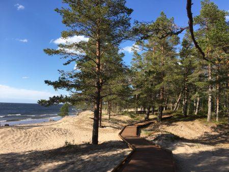 Fäboda, Jakobstad