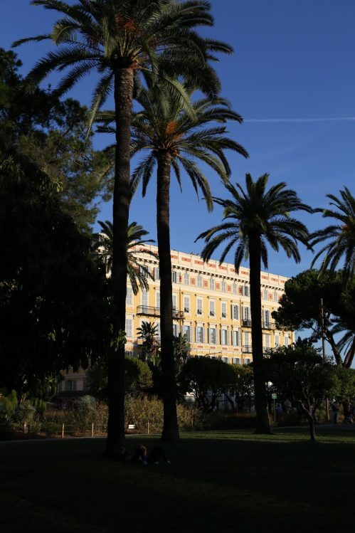 Nice in one day: palms of Promenade des Anglais