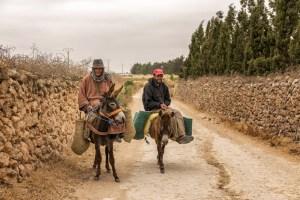 Marocains sur leurs ânes à Oualidia au Maroc - Les Routes du Monde