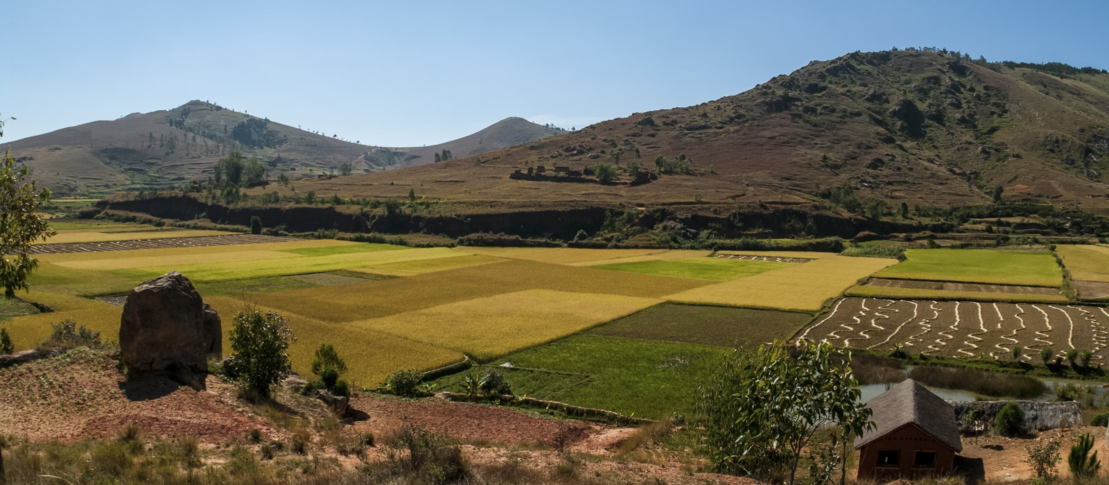 img-diapo-entete - Madagascar-1600x700-11.jpg