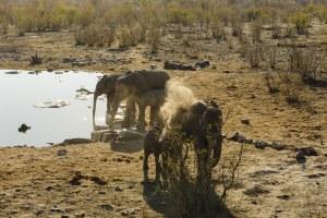 img-diapo-tab - Namibie-1600x900-32.jpg
