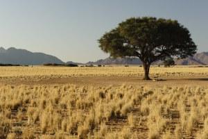 Sesriem, Namibie - les Routes du Monde