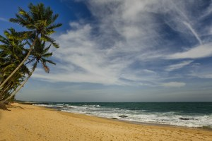 img-diapo-tab - Sri-Lanka-1600x900-10.jpg