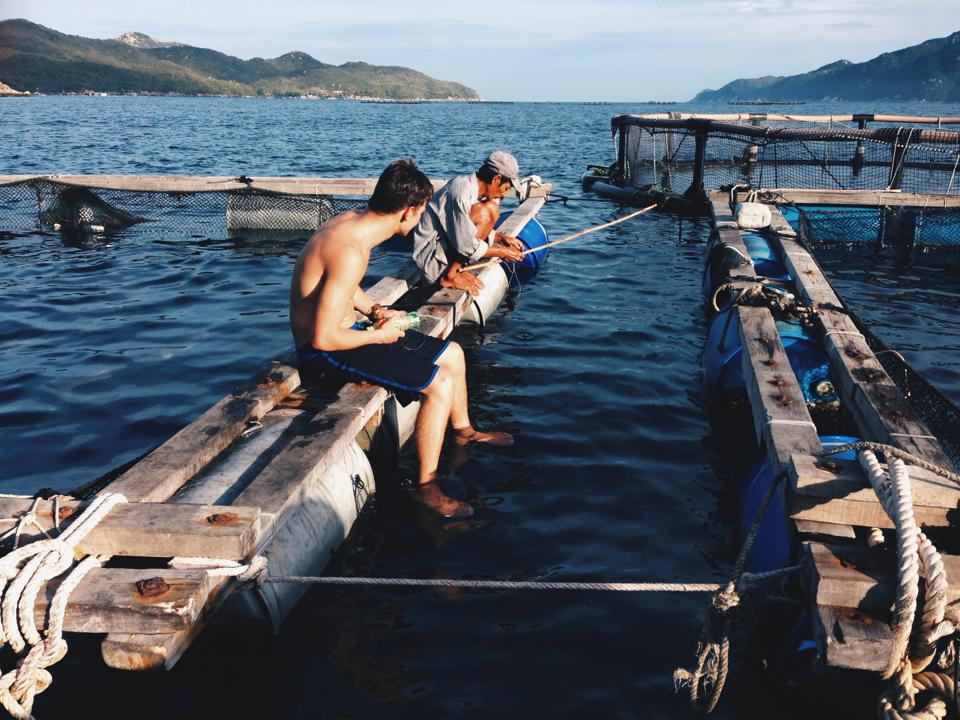 evolve: fishing with villagers in Vietnam