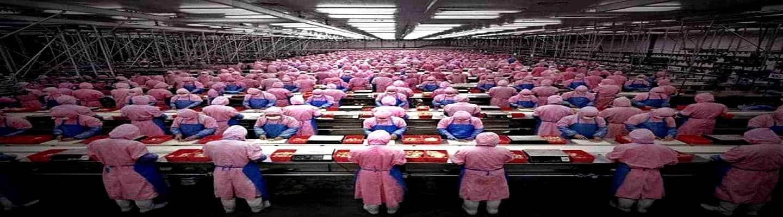 Η σύγχρονη εργατική τάξη και το κίνημά της - Μέρος 1ο