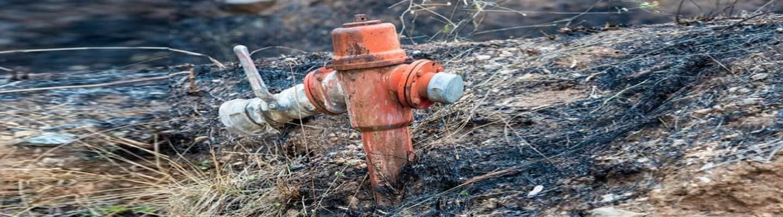 Φωτιά στην Εύβοια – Το κινητό «πρόδωσε» τον εμπρηστή