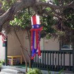 House Sitting Redondo Beach Roving Jay