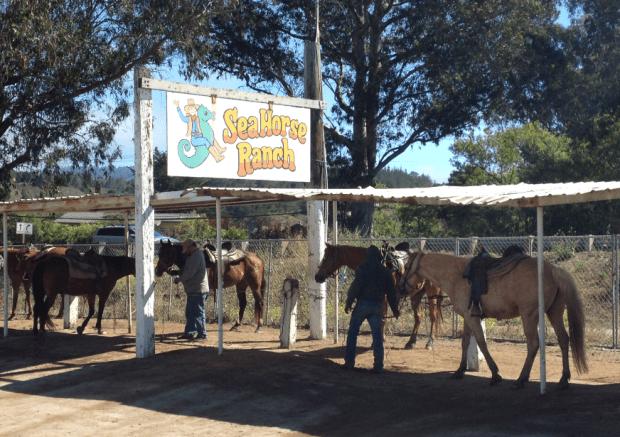 Sea Horse Ranch Half Moon Bay California