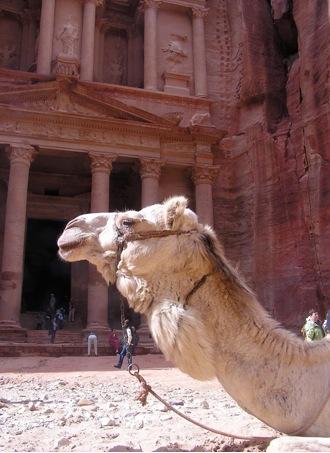 Ann Mershon Camel