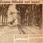 19661210 Groene Hilledijk met iepen (HVV)