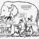 Hybrid Digital Expertise Firms