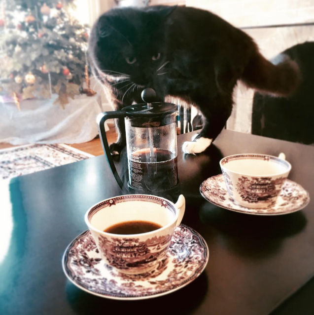 Coffee Preparation Inspector