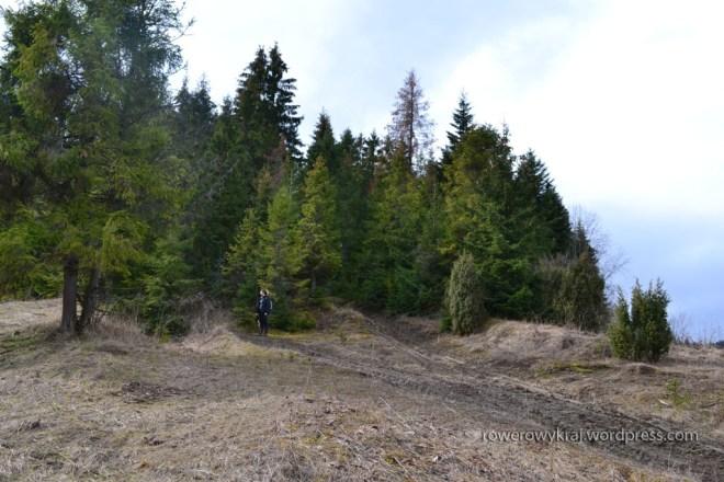 Tak się zaczyna szlak tuż z potokiem Łapszanka