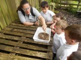 We looked at what a real bird's nest was made from (Small)