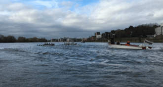 Rough(ish) water on the Tideway Image Credit: WestLondonSport
