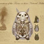 Anatomy of a Forest Spirit: My Neighbor Totoro Specimen Sheet