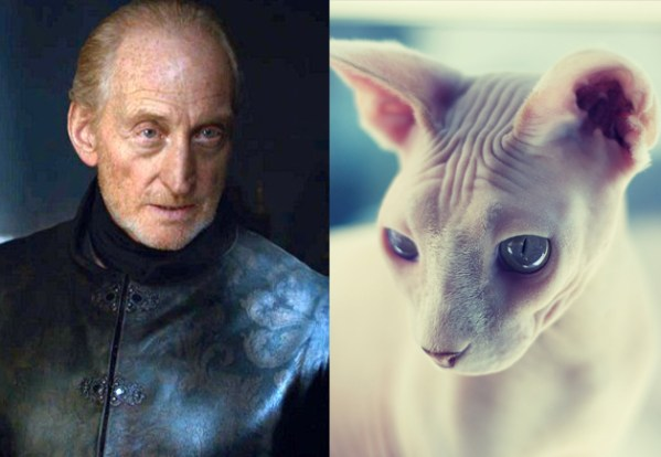 Tywin Lannister - Game of Thrones Characters as Cats