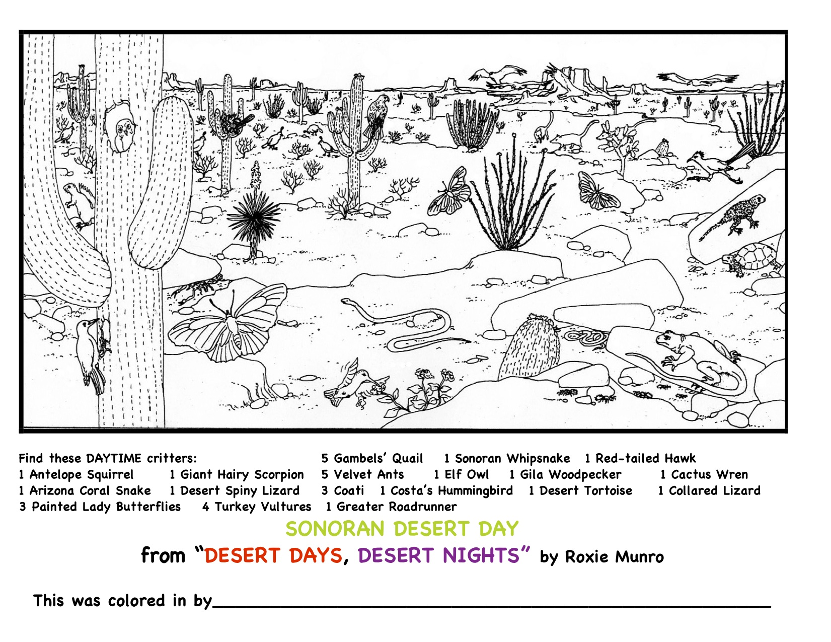 Mazes And Coloring Pages