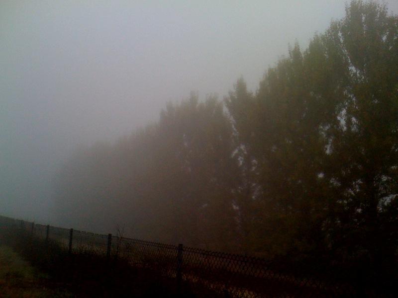 2009.10.sf-fog