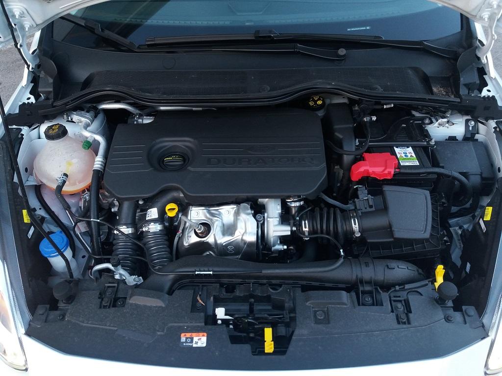 Ford Fiesta Vignale 1.5 TDCi 85 cv 5p (51)