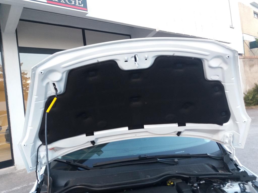Ford Fiesta Vignale 1.5 TDCi 85 cv 5p (52)