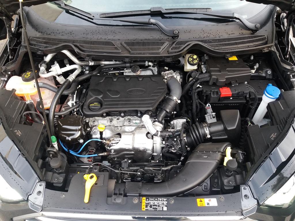 Ford EcoSport 1.5 TDCi EcoBlue 100 cv S&S Titanium (26)
