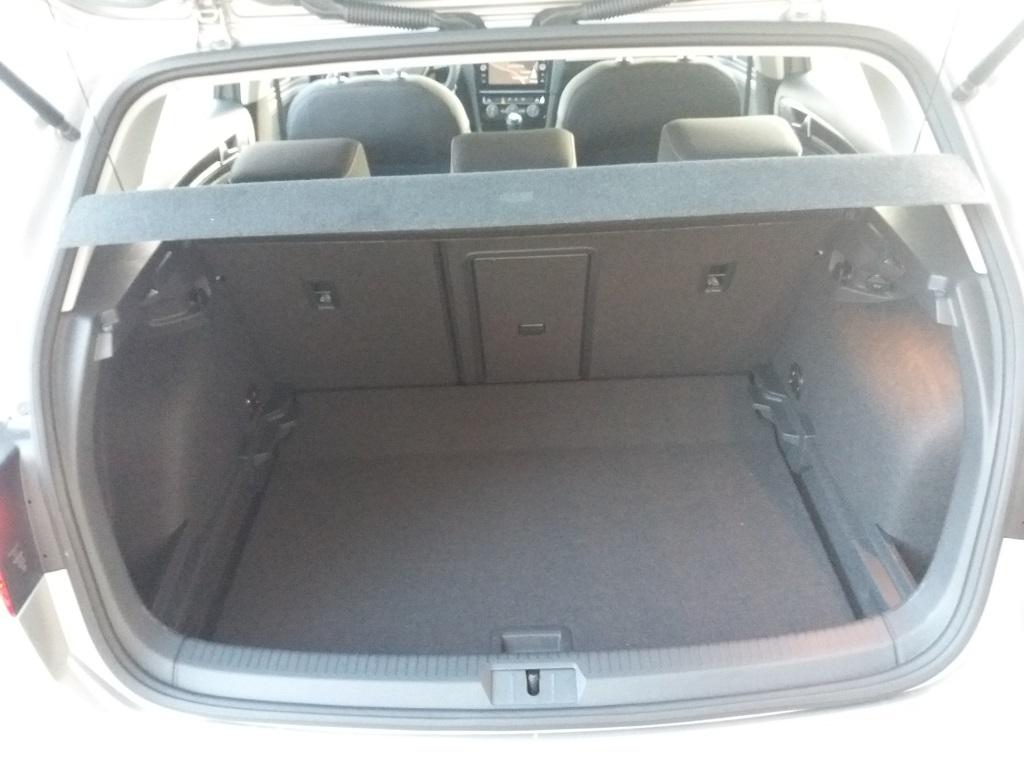 Volkswagen Golf 1.6 TDI Executive 115 cv (18)