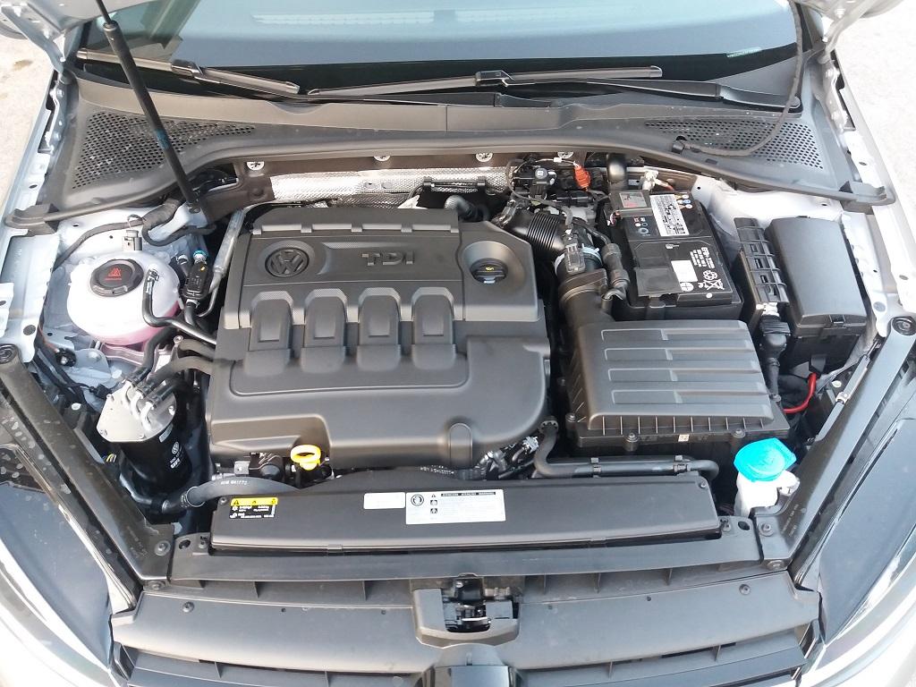 Volkswagen Golf 1.6 TDI Executive 115 cv (45)