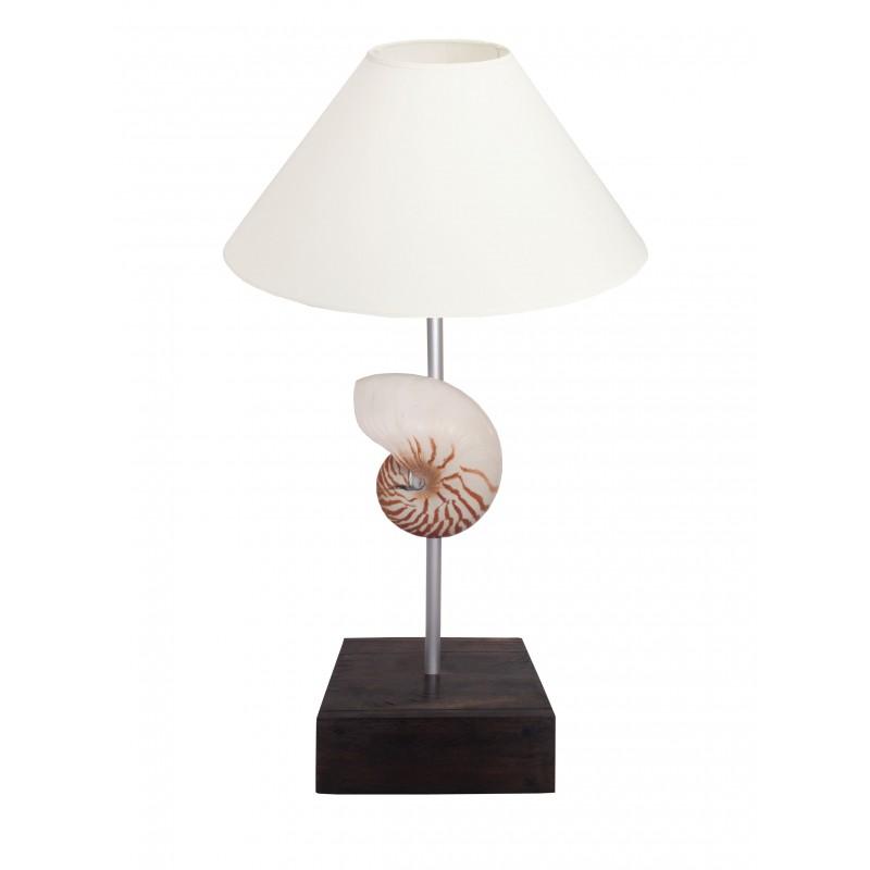 lampe sur pied avec coquillage nautile naturel sur base en acajou