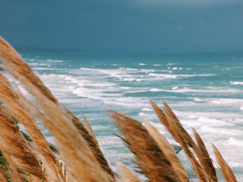 ocean biarritz
