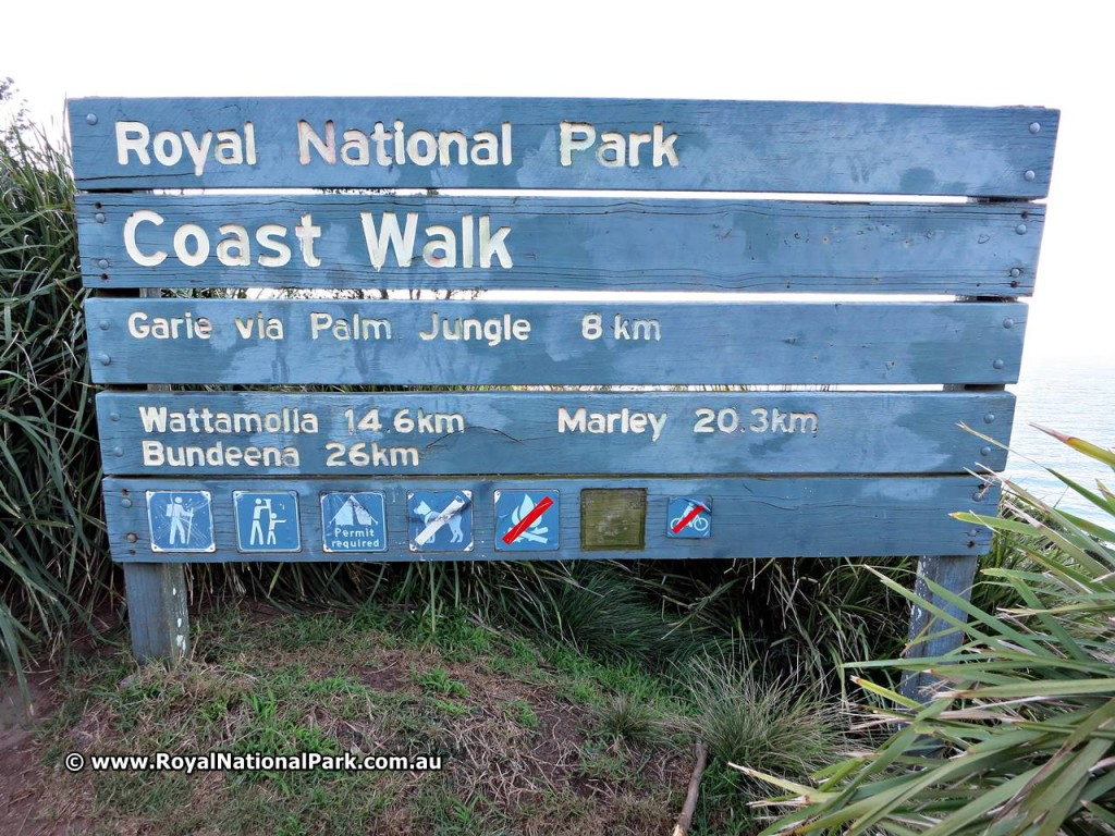 Coast Walk Sydney Royal National Park - Coastal Walk
