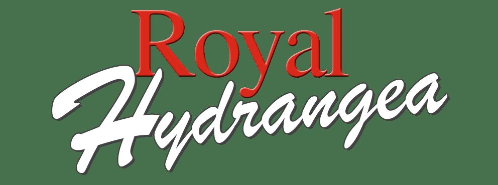 Royal Hydrangea Hortensia kweker