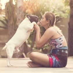 Aromatherapy Pet Products