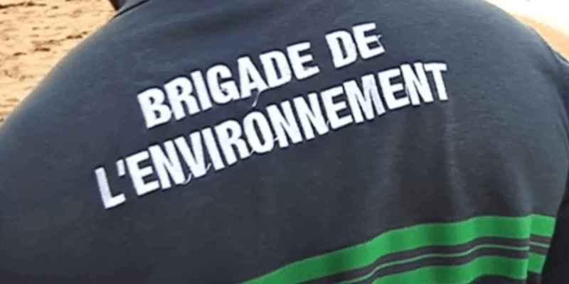 Une brigade de l'environnement est née à Royan