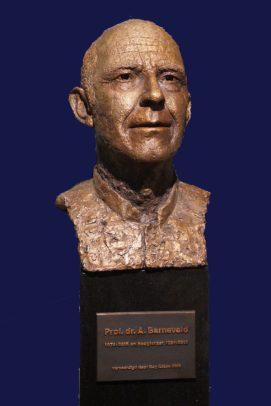 portret professor brons