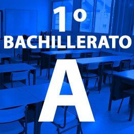 1º Bachillerato A IES Las Rozas 1