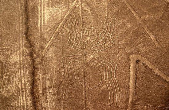 rysunek z Nazca