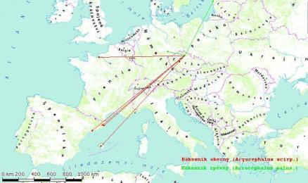 Mapa.Rak_.ob_.zp_01
