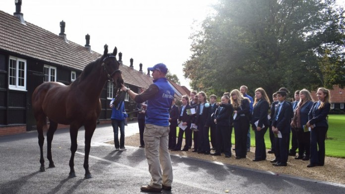 Students from Newmarket Academy are introduced to Farhh at Darley's Dalham Hall Stud