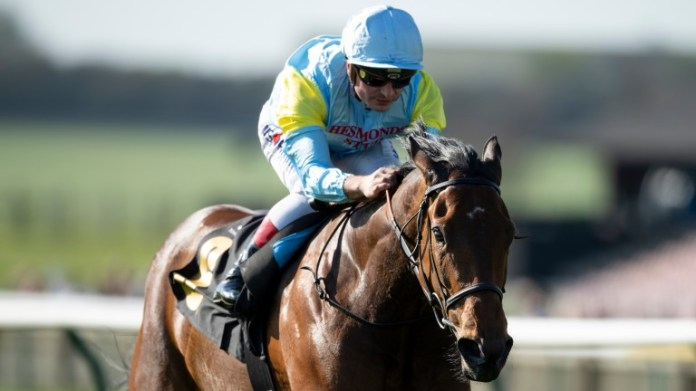Qazyna: List-winner Frankel's daughter among Hesmonds Stud mares visiting the Golden Horde in 2021